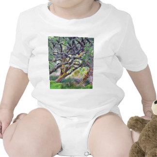 Paso de Glengesh en el árbol viejo de Irlanda Camisetas