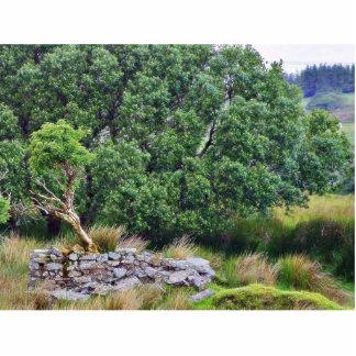 Paso de Glengesh en el paisaje de Irlanda Esculturas Fotográficas