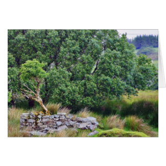 Paso de Glengesh en el paisaje de Irlanda Tarjetas