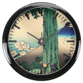 Paso de Michima en la provincia de Kai Relojes Aquavista
