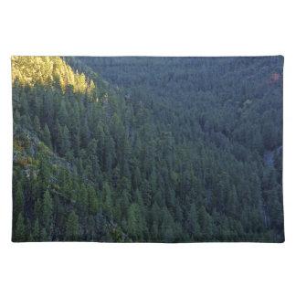 Paso del bosque de la montaña manteles individuales