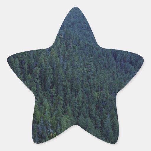 Paso del bosque de la montaña calcomanías forma de estrellas personalizadas
