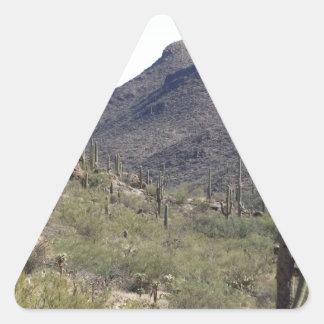 Paso del desierto del Saguaro Calcomanías Triangulos Personalizadas