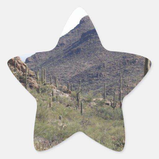 Paso del desierto del Saguaro Colcomanias Forma De Estrellaes Personalizadas