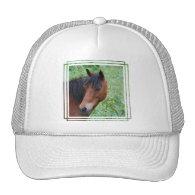 Paso Fino Baseball Hat
