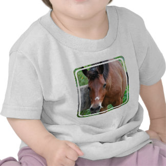 Paso Fino Horse Baby T-Shirt