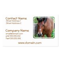 Paso Fino Horse Business Card