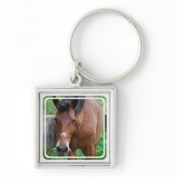 Paso Fino Horse Keychain
