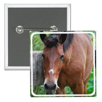 Paso Fino Horse Pin
