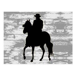 Paso Fino Horse Silhouette Rider Post Card
