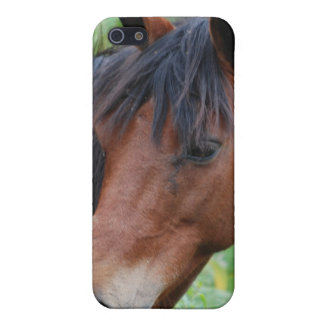 Paso Fino iPhone 4 Case