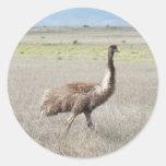 paso grande del emu etiqueta redonda