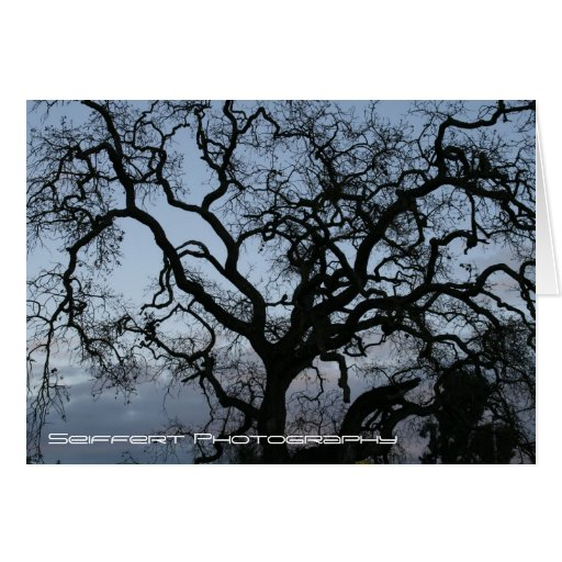Paso Robles 2 Stationery Note Card