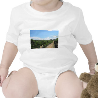 Paso Robles, California, Wine Country Bodysuit