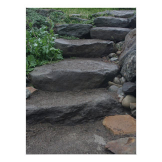 Pasos de piedra posters