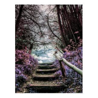 Pasos del bosque de la fantasía postal