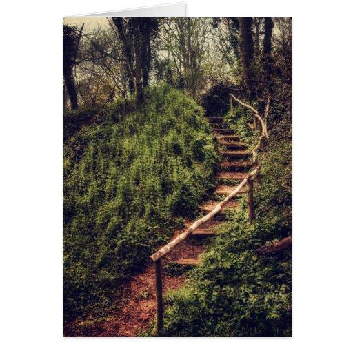 Pasos del bosque tarjeta de felicitación