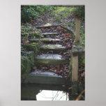 pasos mojados impresiones