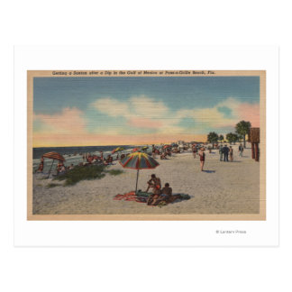 Pass-a-Grille Beach, Florida - Sunbathers on Postcard
