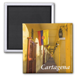 Passageway and Flags Magnet