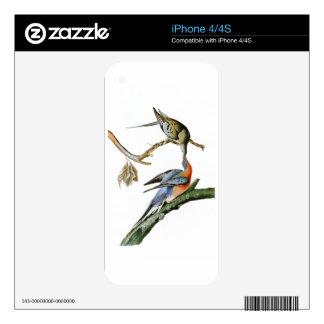 Passenger Pigeon John Audubon Birds of America iPhone 4S Skins
