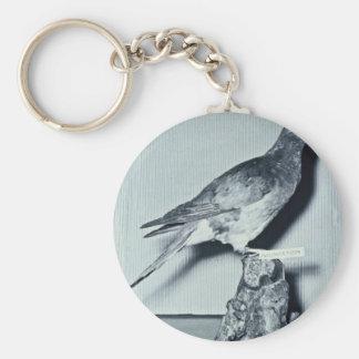 Passenger Pigeon Keychain
