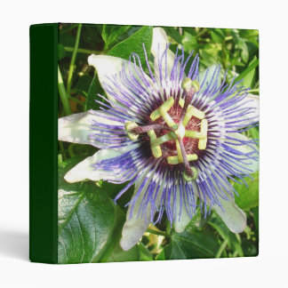 Passiflora Against Green Foliage In A Garden Binder