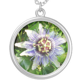 Passiflora Against Green Foliage In A Garden Silver Plated Necklace
