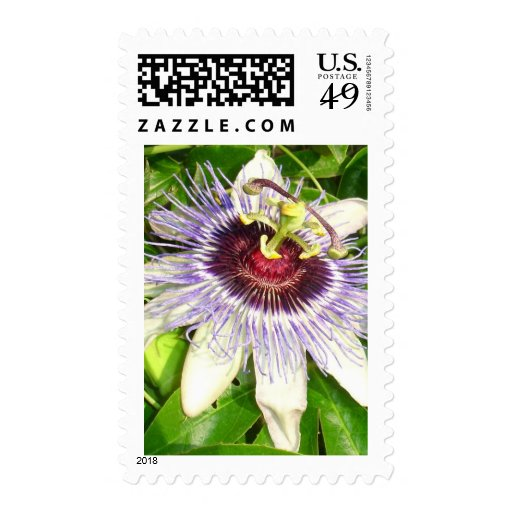 Passiflora Close Up With Garden Background Stamps