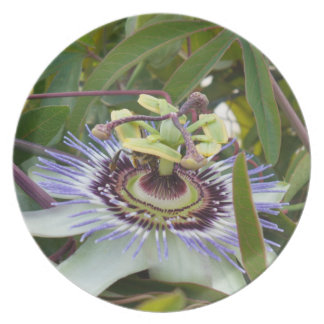 Passiflora Party Plate