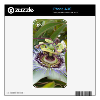 Passiflora Skins For iPhone 4S