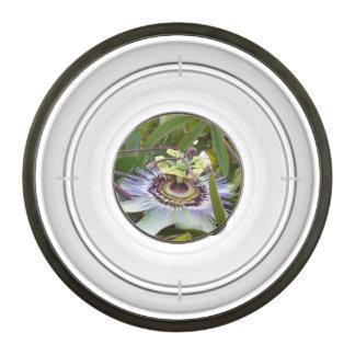 Passiflora Pet Bowl