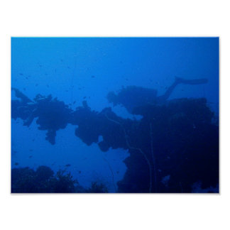 Passing Diver Print