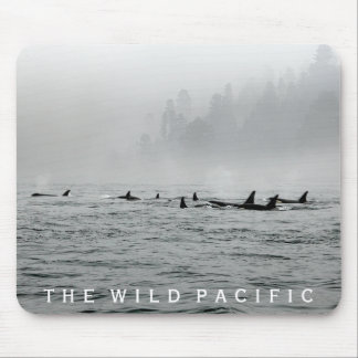Passing Whales Mouse Pad