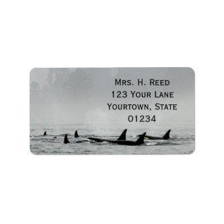 Passing Whales Return Address Label
