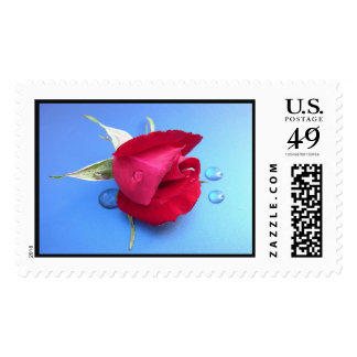 Passion and Tears Stamp. Postage Stamps