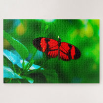 Passion Butterfly. Jigsaw Puzzle