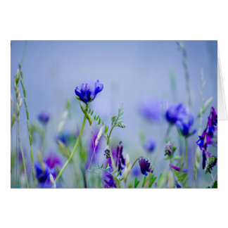 Passion Field Greeting Cards