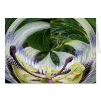 Passion Flower Cards