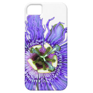Passion Flower iPhone 5 Case
