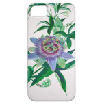 Passion Flower iPhone 5 Cover