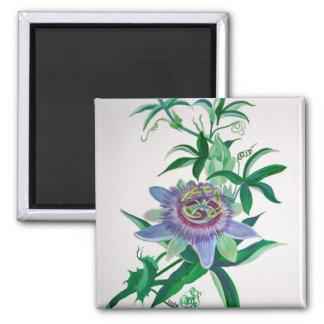 Passion Flower Refrigerator Magnets