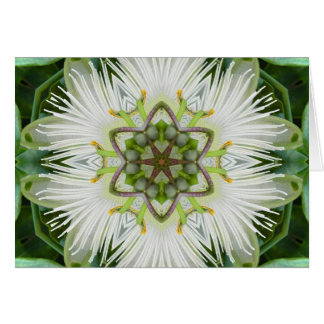 Passion Flower Mandala Cards