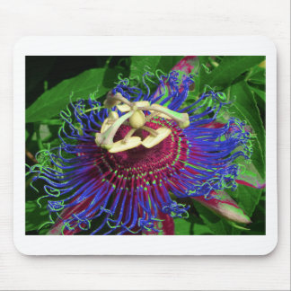 passion_flower mouse pad
