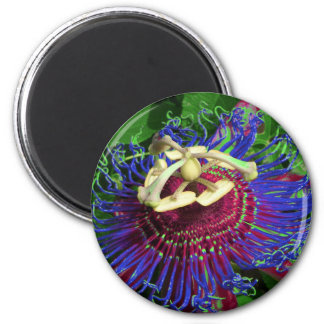 passion_flower refrigerator magnets