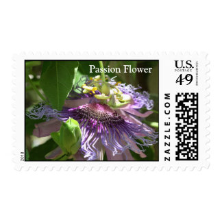 Passion Flower Stamps