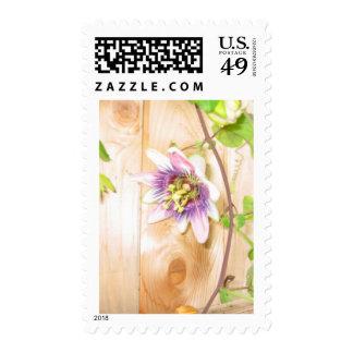 Passion Flower Vine Stamps