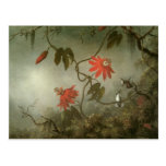 Passion Flowers and Hummingbirds by Martin J Heade Post Cards