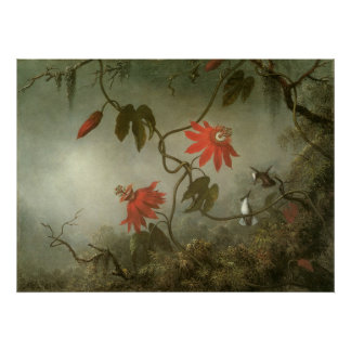 Passion Flowers and Hummingbirds by Martin J Heade Poster