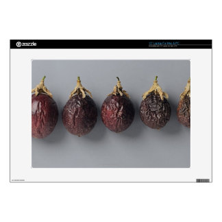 """Passion fruit aging 15"""" laptop decal"""